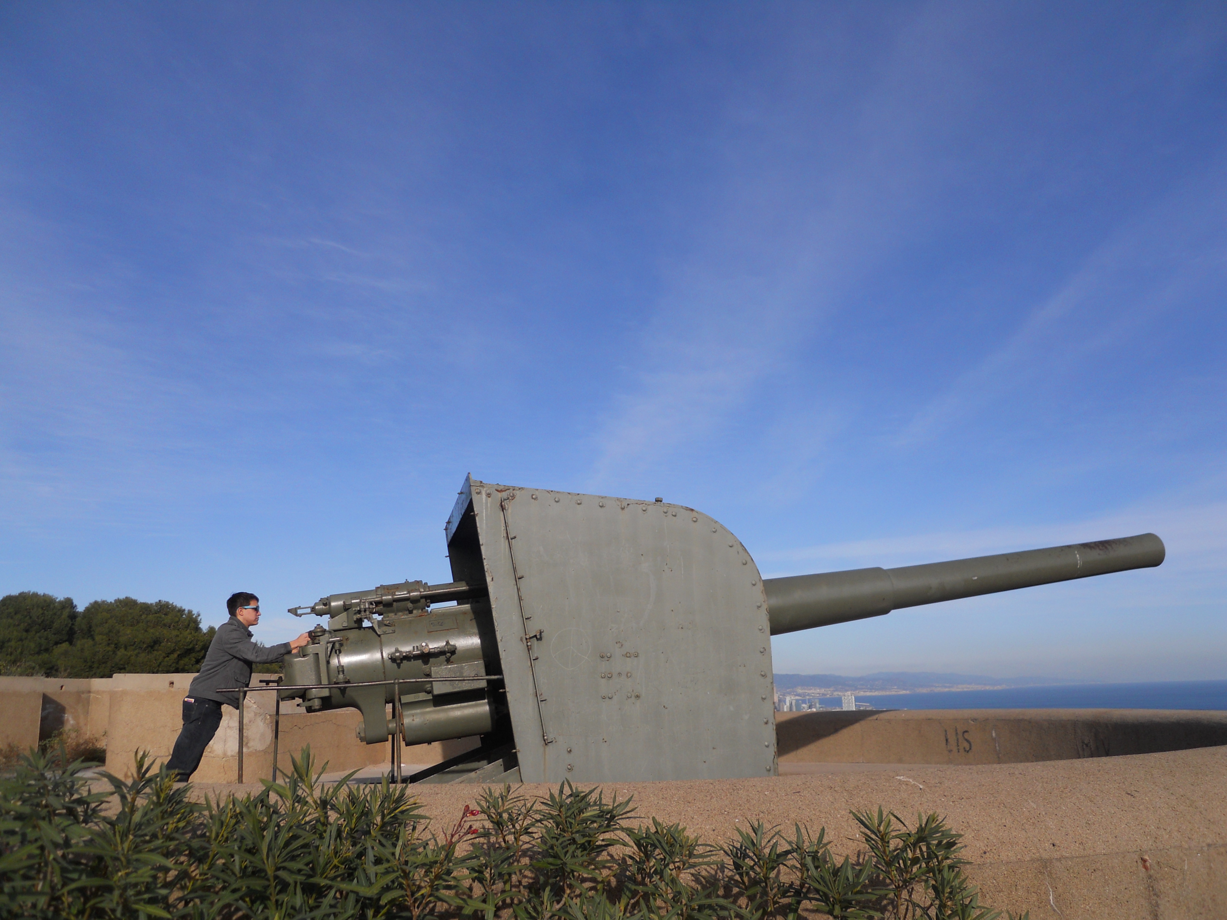 me with a cannon